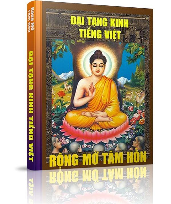 Những vấn đề liên quan đến Đại Tạng Kinh - Về công trình Đại Tạng Kinh Việt Nam