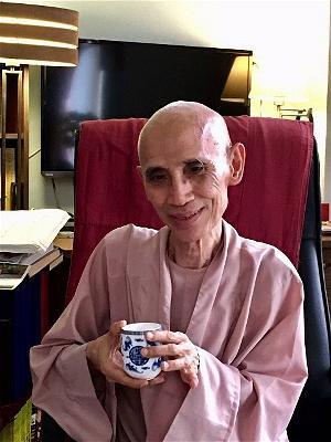 Sử Dụng Thất Giác Chi (Thất Bồ Đề Phần) Trong Công Phu Môn Niệm Phật - Tuệ Sỹ - Người gầy trên quê hương