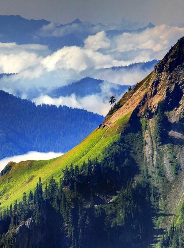 Bài viết, tiểu luận, truyện ngắn - Vài Ghi Chú Rời Về Thiền