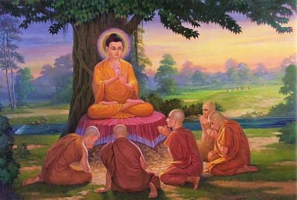 Sử Dụng Thất Giác Chi (Thất Bồ Đề Phần) Trong Công Phu Môn Niệm Phật - Phật pháp và niềm tin