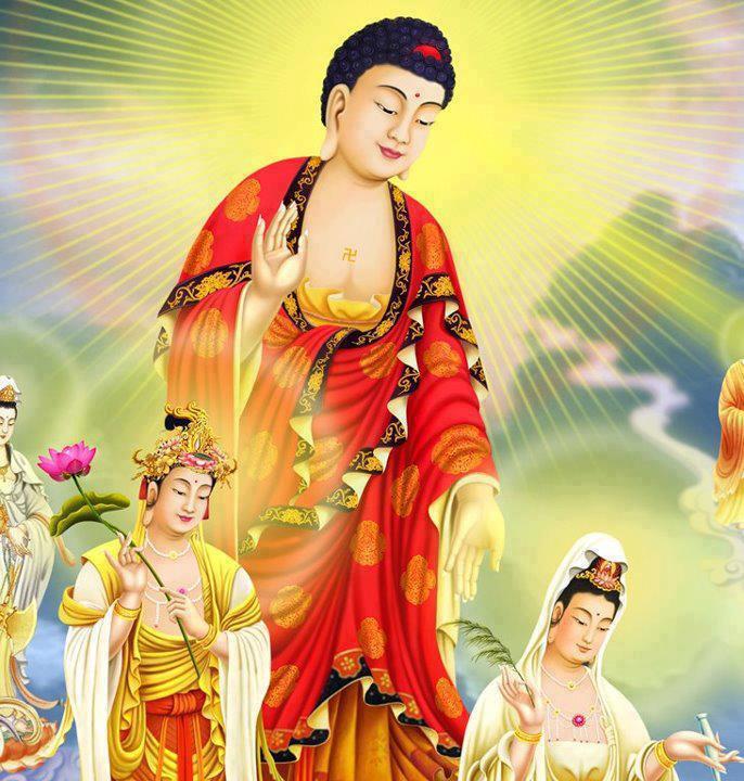 Bài viết, tiểu luận, truyện ngắn - Vài suy nghĩ về Pháp môn Niệm Phật & tông Tịnh Độ