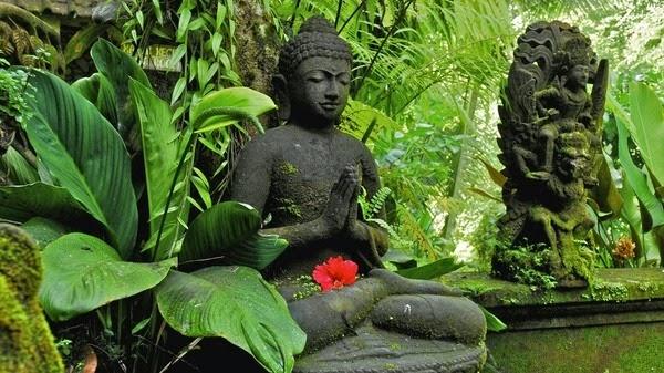 Tu học Phật pháp - Thành trì vững chắc của người tu