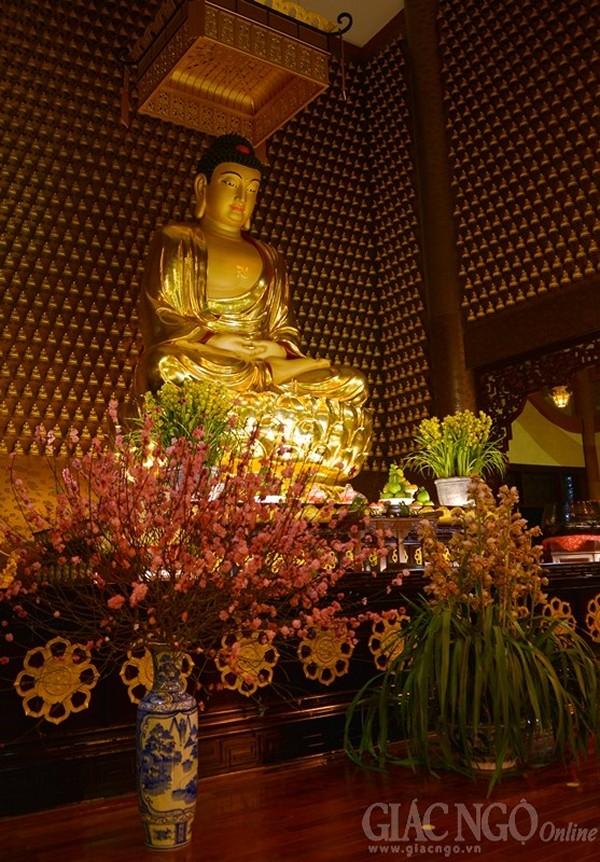 Tu học Phật pháp - Đức tin của người Phật tử