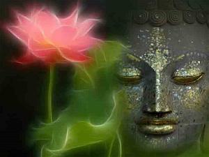 Bài viết, tiểu luận, truyện ngắn - Phật dạy về bốn hạng người