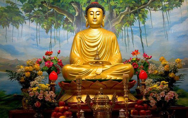 Bài viết, tiểu luận, truyện ngắn - Phật dạy không làm các việc xấu ác