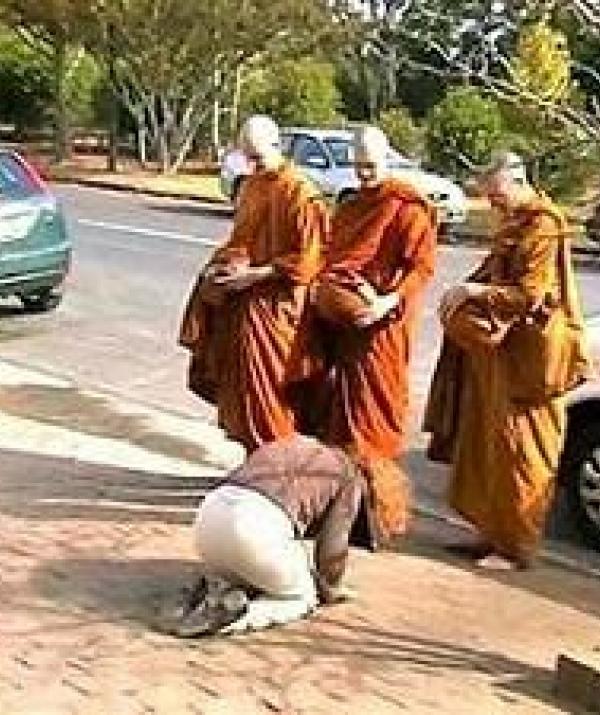 Sử Dụng Thất Giác Chi (Thất Bồ Đề Phần) Trong Công Phu Môn Niệm Phật - Trái ớt cúng dường