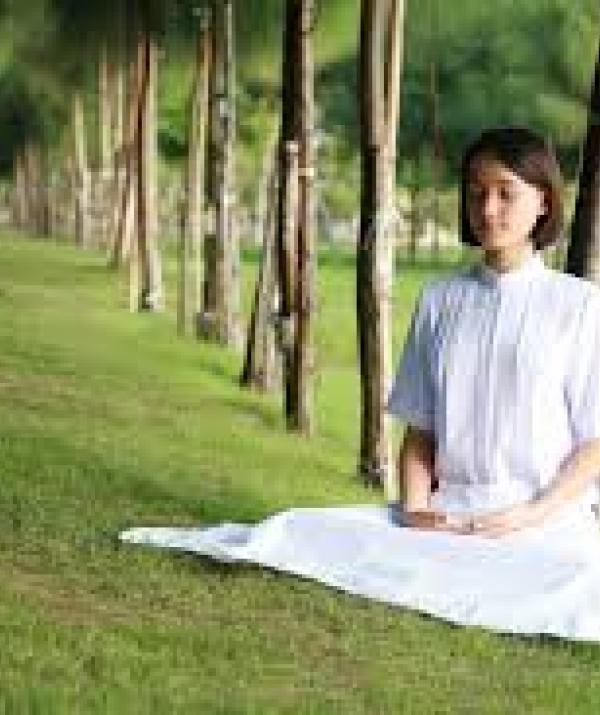 Sử Dụng Thất Giác Chi (Thất Bồ Đề Phần) Trong Công Phu Môn Niệm Phật - Hạnh kiên nhẫn