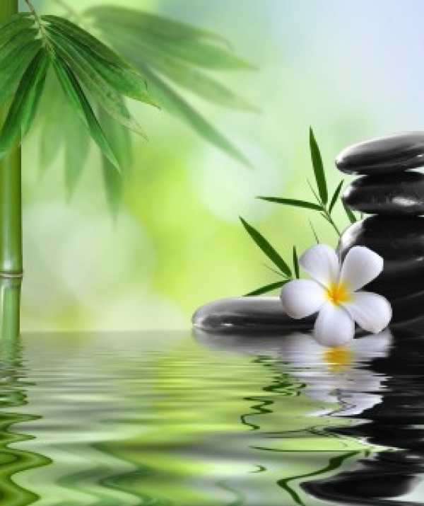 Tu học Phật pháp - Thơ Thiền đời Lý-Trần