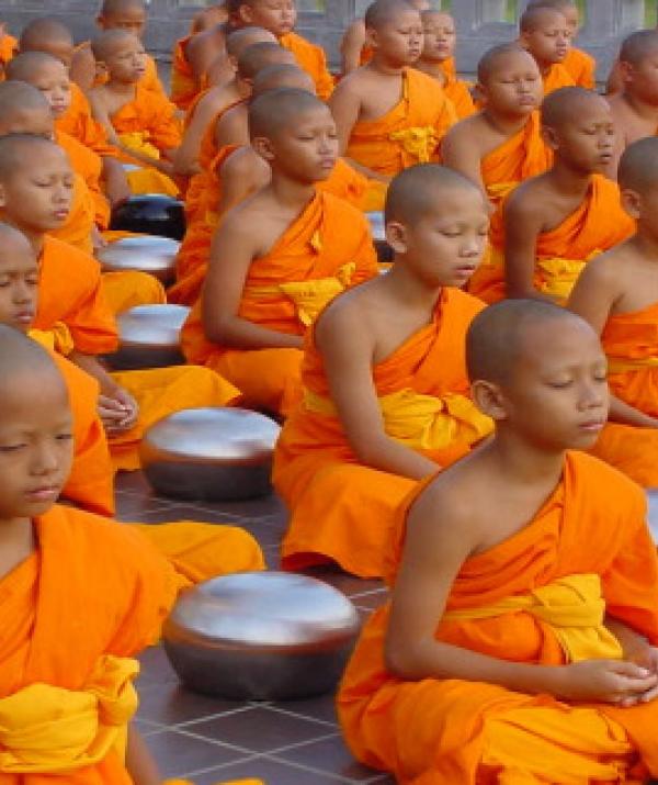 Sử Dụng Thất Giác Chi (Thất Bồ Đề Phần) Trong Công Phu Môn Niệm Phật - Người tu sĩ xin hãy nhìn lại