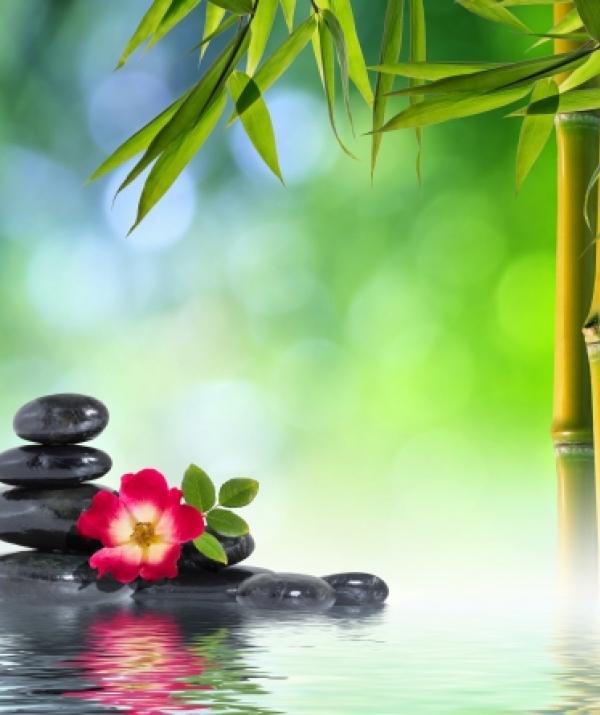 Mục đích của đạo Phật - Niềm vui tịch lặng