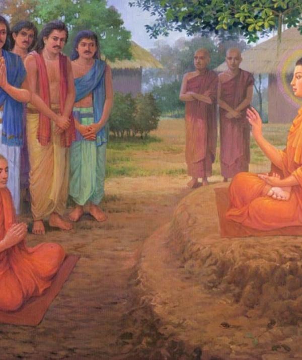 Sử Dụng Thất Giác Chi (Thất Bồ Đề Phần) Trong Công Phu Môn Niệm Phật - Tin sâu nhân quả