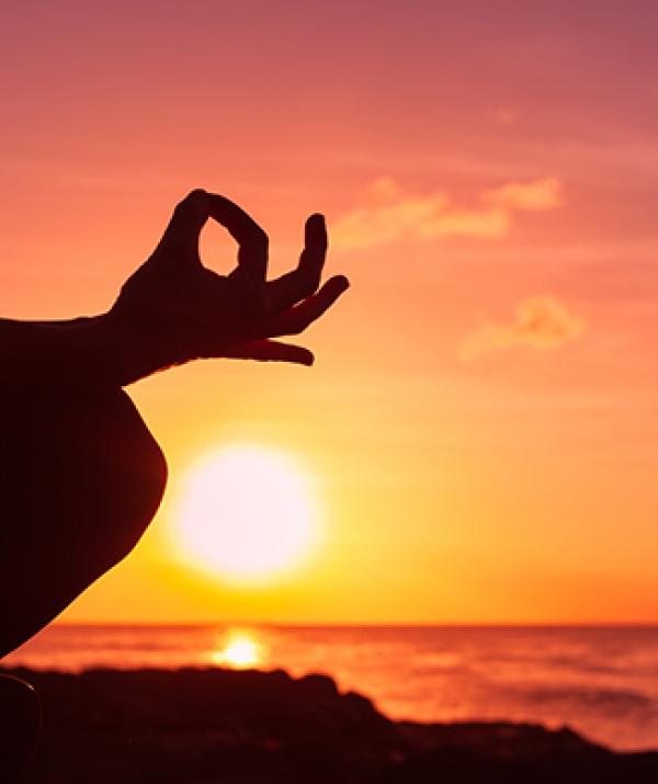 Sử Dụng Thất Giác Chi (Thất Bồ Đề Phần) Trong Công Phu Môn Niệm Phật - Thiền Tông Bất Lập Văn Tự