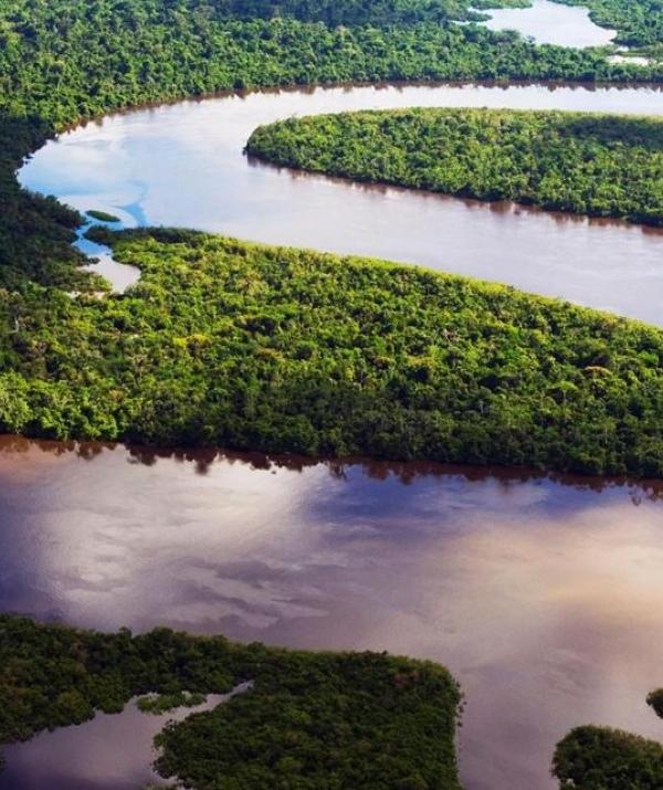 Bài viết, tiểu luận, truyện ngắn - Khúc gỗ trôi sông