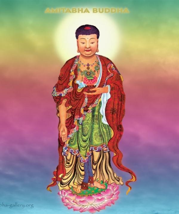 Tu học Phật pháp - Chư Bồ Tát Cảm Mộ Ân Đức Phật A Di Đà
