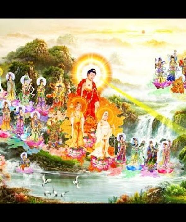 Bài viết, tiểu luận, truyện ngắn - Phật A Di Đà thuyết pháp và thọ ký Bồ tát sẽ thành Phật