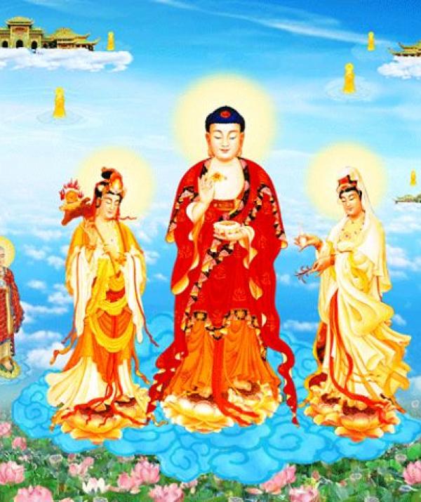 Tu học Phật pháp - Kinh Vô Lượng Thọ trụ thế sau khi Chánh pháp diệt