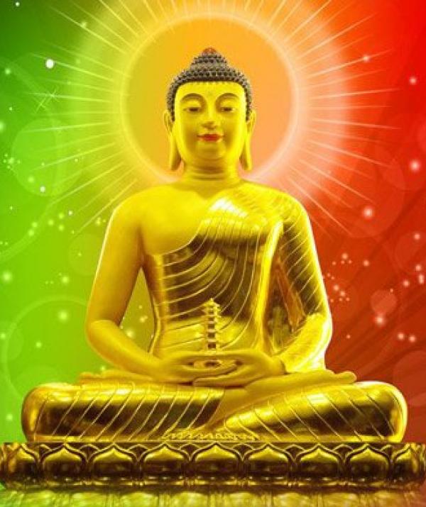 Tu học Phật pháp - Nhìn tới năm 2019