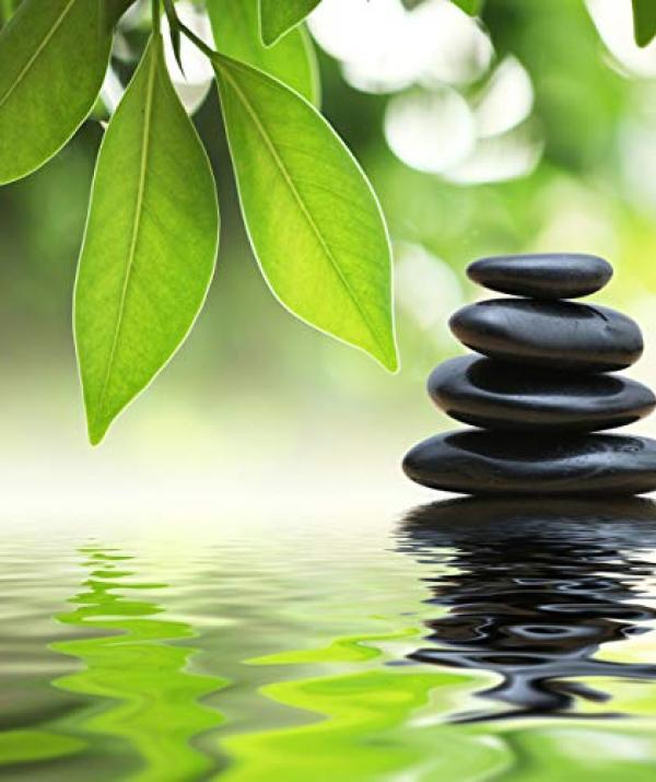 Bài viết, tiểu luận, truyện ngắn - Sư Nhà Tống Sang Học Thiền Nhà Trần