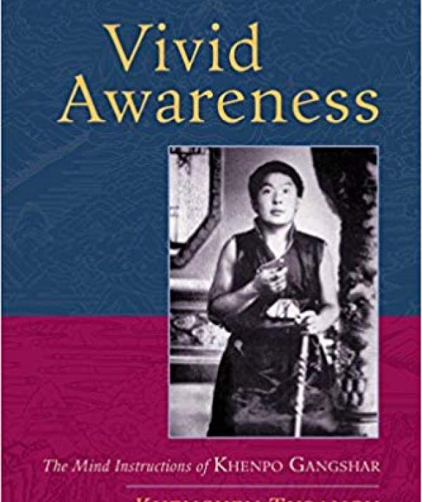 """Bài viết, tiểu luận, truyện ngắn - Tỉnh Thức Rực Rỡ: Đọc Sách """"Vivid Awareness"""""""
