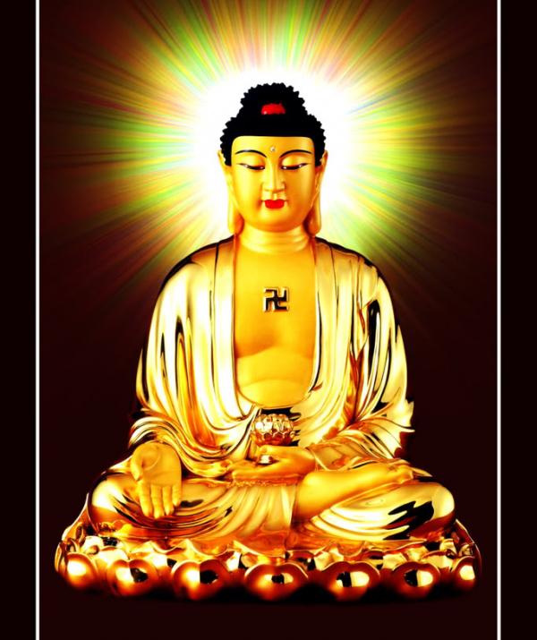 Bài viết, tiểu luận, truyện ngắn - Làm sao cảm ứng với quang minh gia trì của Phật, Bồ-tát?