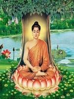Phật Lý Cơ Bản