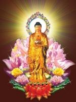Lược sử Đức Phật A-di-đà và 48 đại nguyện