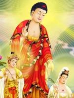 Vài suy nghĩ về Pháp môn Niệm Phật & tông Tịnh Độ