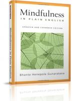 Mindfullness in Plain English