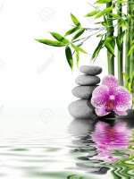 Từ Kinh Phật Sơ Thời đến Thiền Đốn ngộ