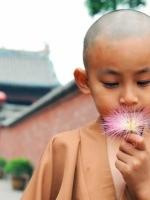 Mạn đàm quanh triết lý giáo dục của Phật giáo