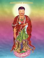 Chư Bồ Tát Cảm Mộ Ân Đức Phật A Di Đà