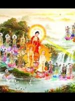 Phật A Di Đà thuyết pháp và thọ ký Bồ tát sẽ thành Phật