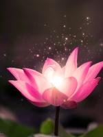 Thật thà niệm Phật