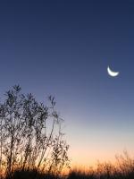 Vầng trăng soi rọi