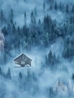 Trí nhớ mù sương