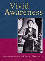 """Tỉnh Thức Rực Rỡ: Đọc Sách """"Vivid Awareness"""""""