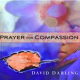 Prayer For Compassion (2009)